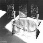 Licht_Schatten
