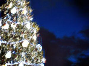Weihnachtsbaum vor dem Alten Rathaus in Prag 2017